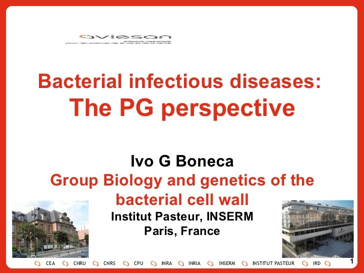 Bacterial infectious diseases:  The PG perspective Ivo G Boneca Group Biology and genetics of the bacterial cell wall Inst...