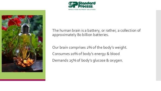 Brain Fitness & Smart Supps Slide 3