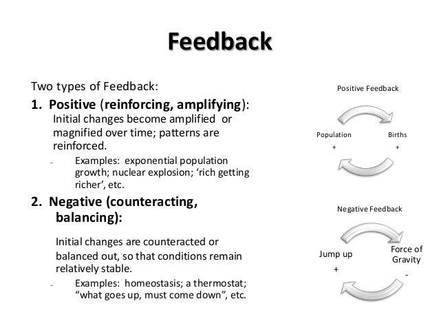 1 29-13 feedback stock-flow