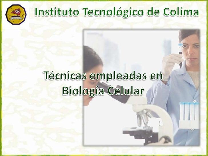 Instituto Tecnológico de Colima<br />Técnicas empleadas en Biología Celular<br />