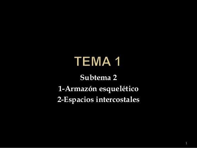 Subtema 2 1-Armazón esquelético 2-Espacios intercostales 1