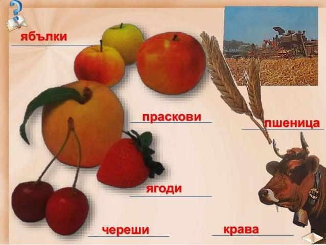 План на урока: 1. Трудова дейност в равнините и низините 2. Трудова дейност в планините 3. Трудова дейност по черноморскот...