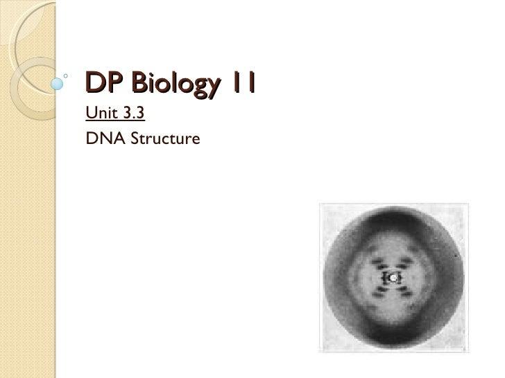 DP Biology 11 Unit 3.3 DNA Structure