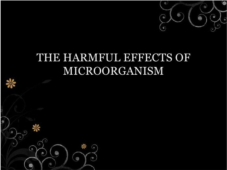 THE HARMFUL EFFECTS OF MICROORGANISM<br />