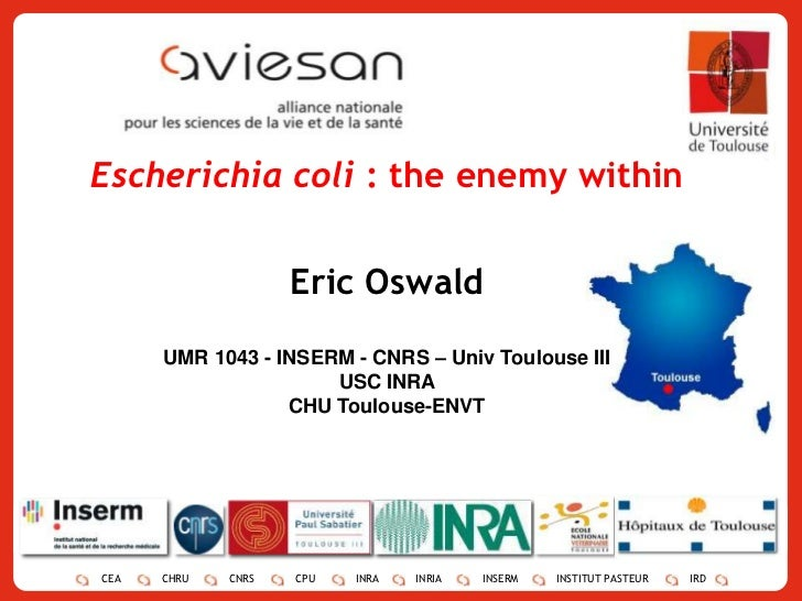 1<br />Escherichia coli : the enemy within<br />Eric Oswald<br />UMR 1043 - INSERM - CNRS – Univ Toulouse III<br />USC INR...