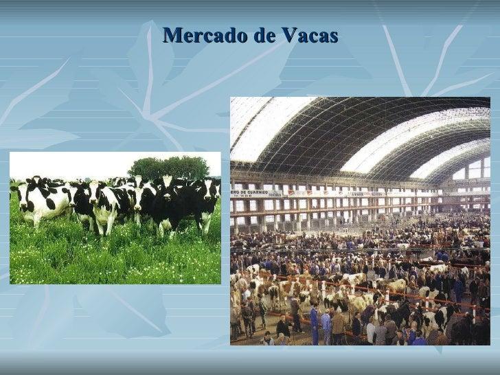 Mercado de Vacas