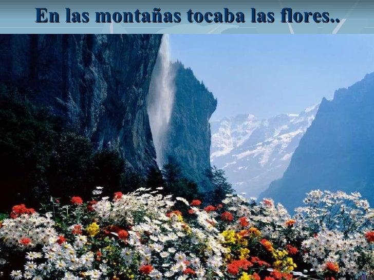 En las montañas tocaba las flores..