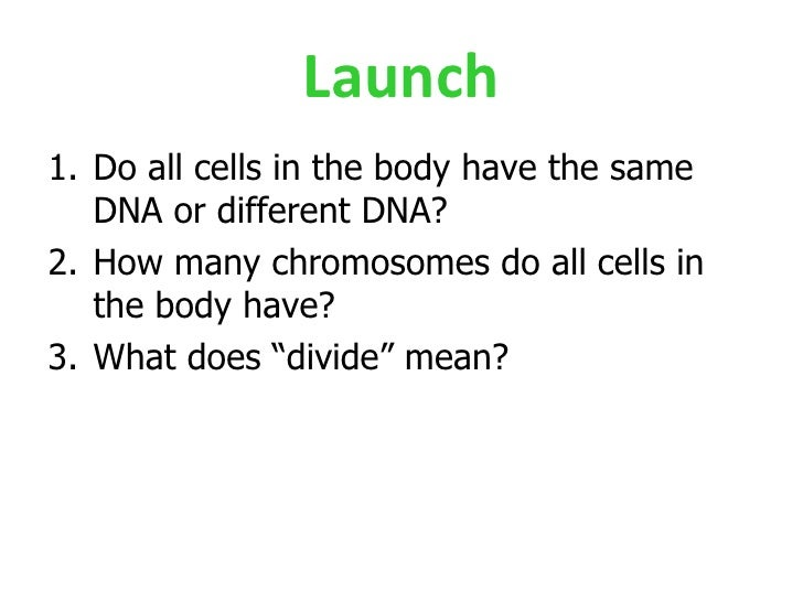 Launch <ul><li>Do all cells in the body have the same DNA or different DNA? </li></ul><ul><li>How many chromosomes do all ...