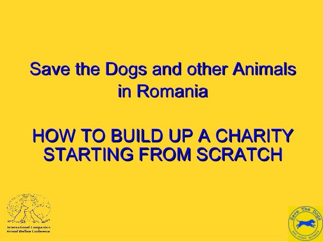 Save the Dogs and other AnimalsSave the Dogs and other Animals in Romaniain Romania HOW TO BUILD UP A CHARITYHOW TO BUILD ...