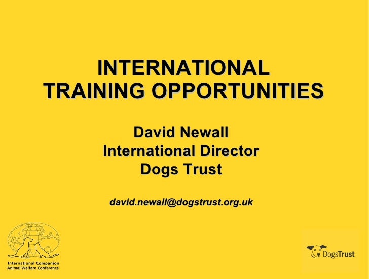 INTERNATIONAL TRAINING OPPORTUNITIES David Newall International Director Dogs Trust [email_address]