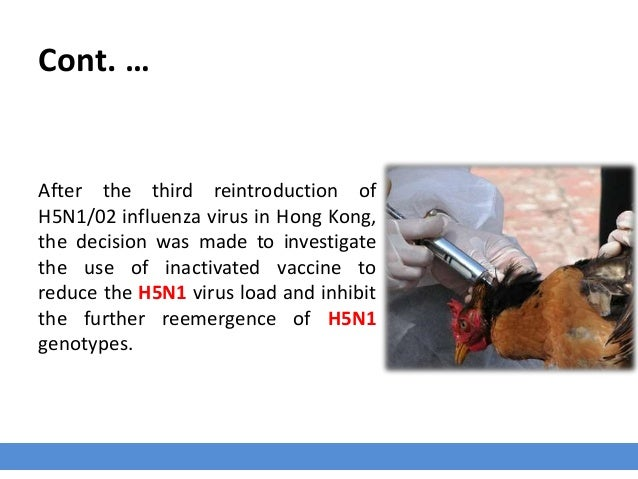 Cont. … After the third reintroduction of H5N1/02 influenza virus in Hong Kong, the decision was made to investigate the u...