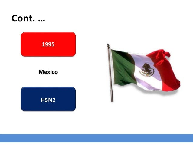 Cont. … 1995 Mexico H5N2