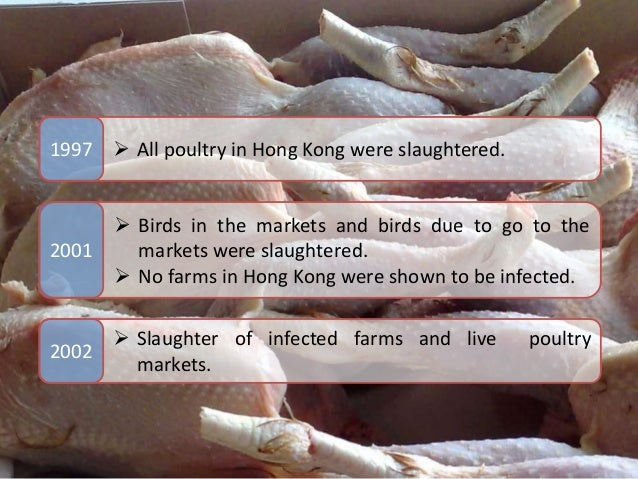 Hong Kong Story  Slaughter of infected farms and live poultry markets.  All poultry in Hong Kong were slaughtered.1997 2...
