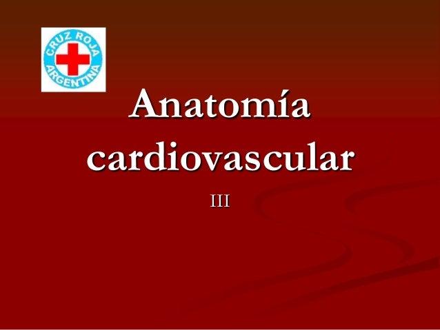 AnatomíacardiovascularIII