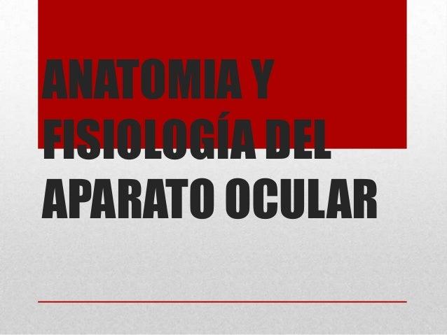 ANATOMIA YFISIOLOGÍA DELAPARATO OCULAR