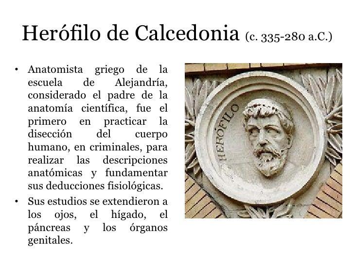Resultado de imagen de Herófilo de Calcedonia