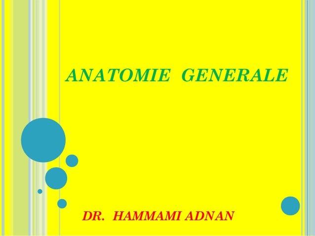 ANATOMIE GENERALE  DR. HAMMAMI ADNAN