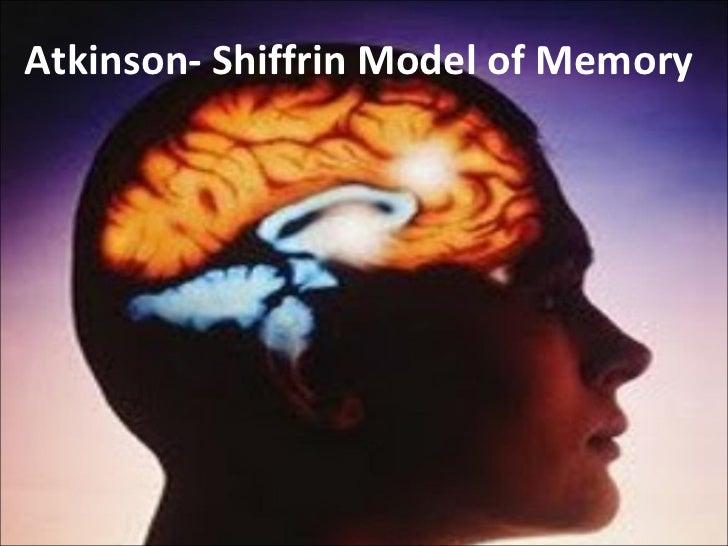 Atkinson- Shiffrin Model of Memory