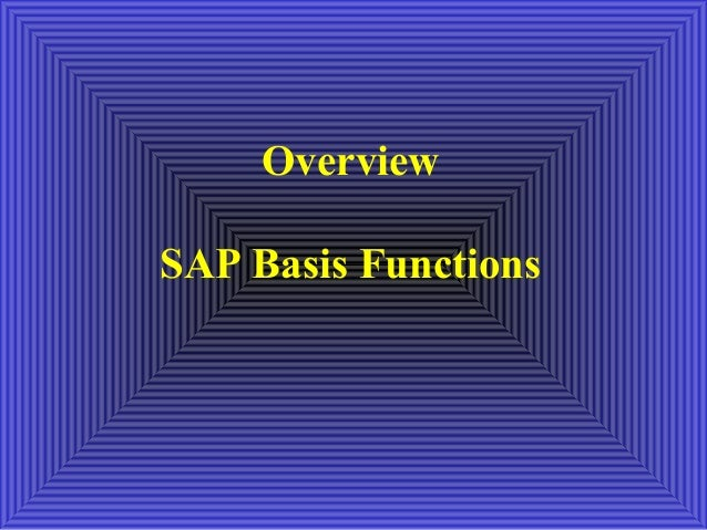 OverviewSAP Basis Functions