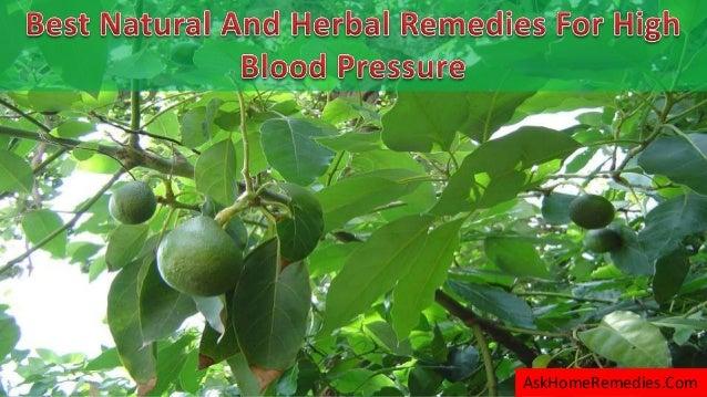 Best herb for blood pressure