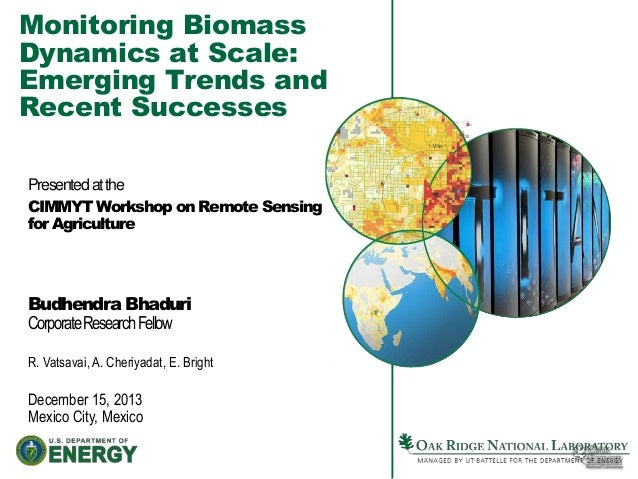 Monitoring Biomass Dynamics at Scale: Emerging Trends and Recent Successes Presented at the CIMMYT Workshop on Remote Sens...
