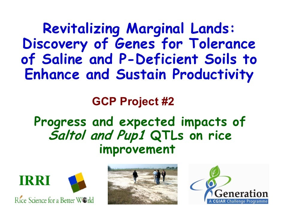 Revitalizing Marginal Lands:Discovery of Genes for Toleranceof Saline and P-Deficient Soils toEnhance and Sustain Producti...