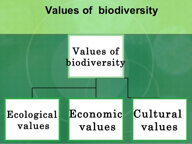 The Biological Basis For Human Values Of Nature