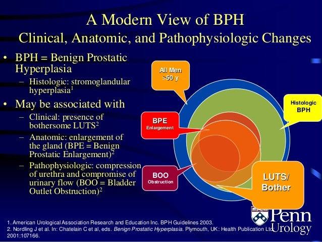 benign prostate hyperplasia bph biology essay Benign prostatic hyperplasia (bph), an age-dependent disorder with a prevalence percentage of 60% in the 60s, has been found to involve an androgenic hormone imbalance that causes confusion between cell apoptosis and proliferation.