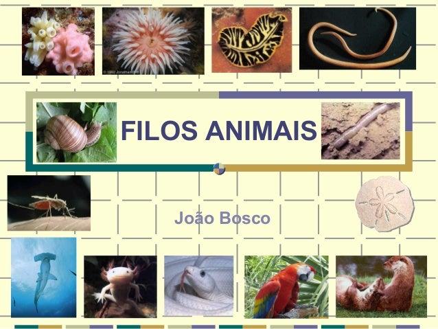 FILOS ANIMAIS  João Bosco