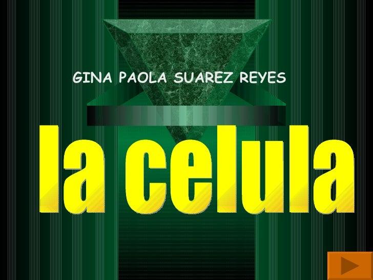 la celula GINA PAOLA SUAREZ REYES