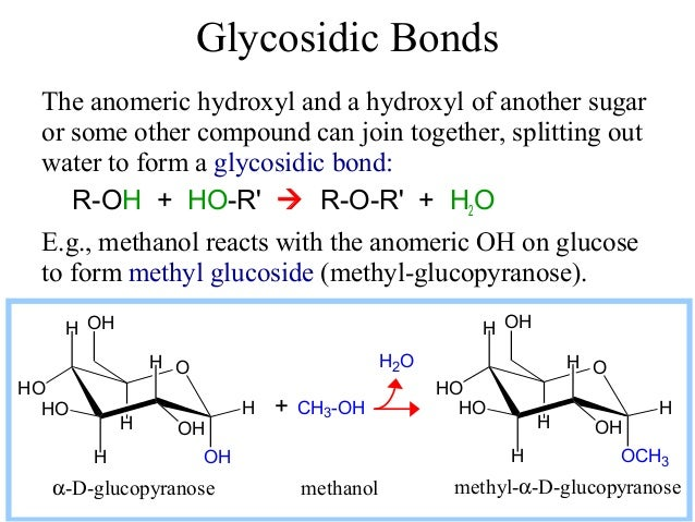 Carbohydrate glycosidic bonds ccuart Image collections