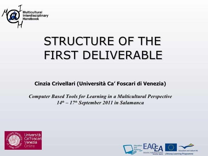 STRUCTURE OF THE FIRST DELIVERABLE Cinzia Crivellari ( Università Ca' Foscari di Venezia ) Computer Based Tools for Learni...