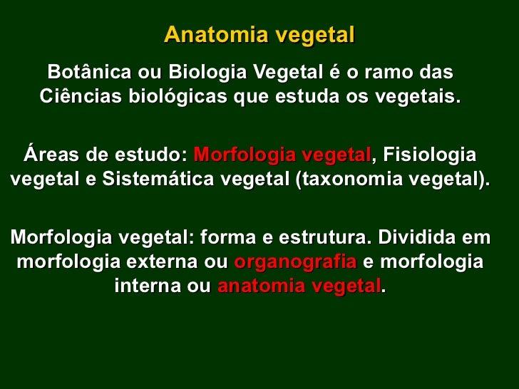 Anatomia vegetal Botânica ou Biologia Vegetal é o ramo das Ciências biológicas que estuda os vegetais. Áreas de estudo:  M...