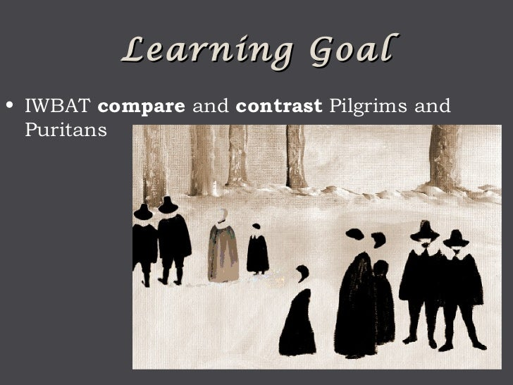 pilgrims and puritans essay New england puritans pilgrims and puritans essay & pilgrims learning guide.