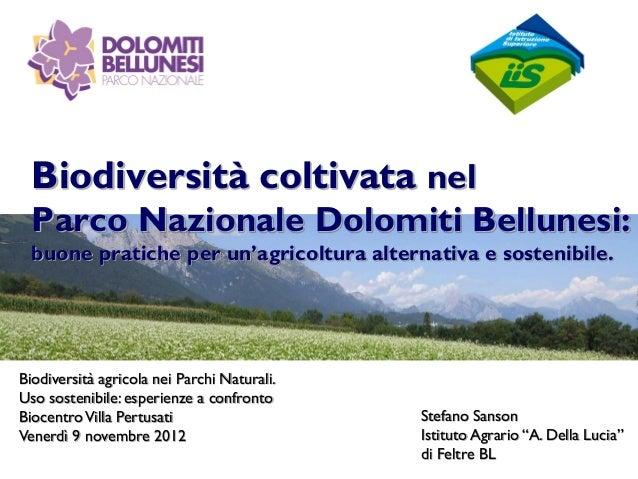 Biodiversità coltivata nel  Parco Nazionale Dolomiti Bellunesi:  buone pratiche per un'agricoltura alternativa e sostenibi...