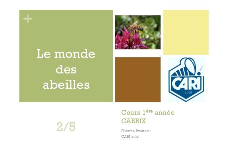 +    Le monde       des     abeilles                Cours 1ère année                CABRIX      2/5       Etienne Bruneau ...