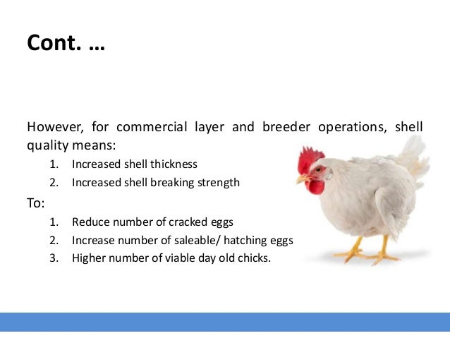 Cont. … However, for commercial layer and breeder operations, shell quality means: 1. Increased shell thickness 2. Increas...