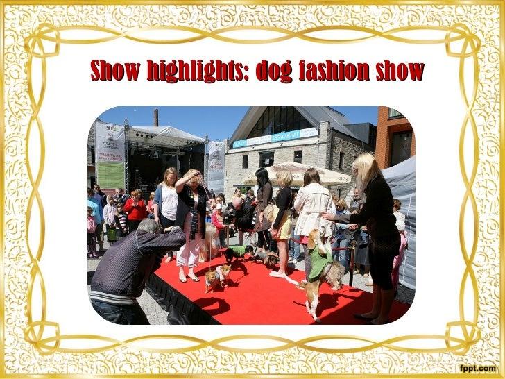 Show highlights: dog fashion show