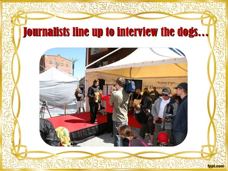Journalists line up to interview the dogs…