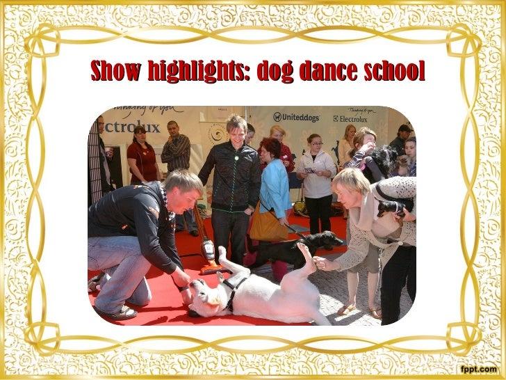 Show highlights: dog dance school