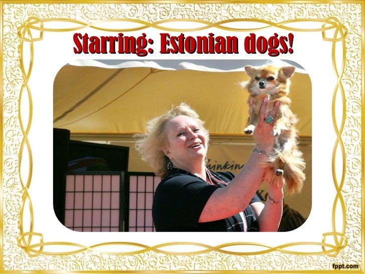 Starring: Estonian dogs!