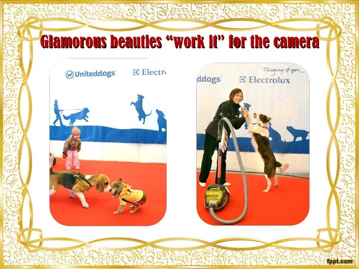 """Glamorous beauties """"work it"""" for the camera"""