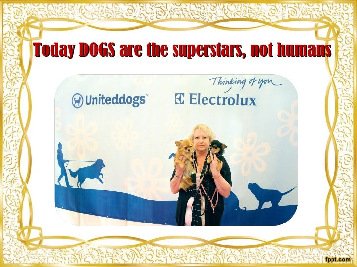 Today DOGS are the superstars, not humans
