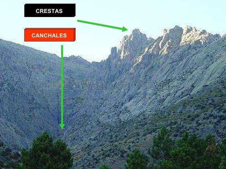 CRESTAS CANCHALES
