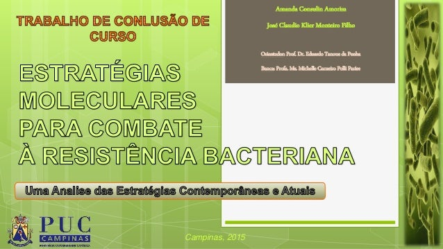 Amanda Consulin Amorim José Claudio Klier Monteiro Filho Campinas, 2015 Orientador: Prof. Dr. Eduardo Tanoue da Penha Banc...