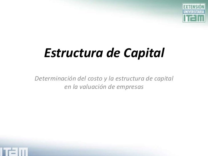 Estructura de Capital<br />Determinación del costo y la estructura de capital en la valuación de empresas<br />