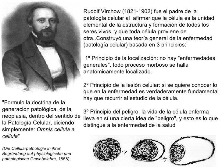 Rudolf Virchow (1821-1902) fue el padre de la patología celular al  afirmar que la célula es la unidad elemental de la est...