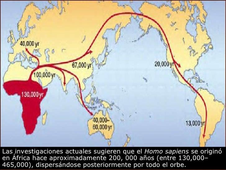 Las investigaciones actuales sugieren que el  Homo sapiens  se originó en África hace aproximadamente 200, 000 años   (ent...