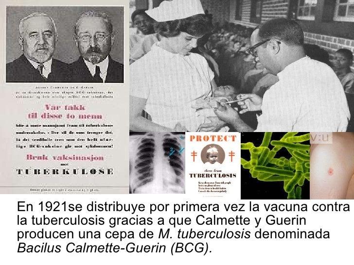 <ul><li>En 1921se distribuye por primera vez la vacuna contra la tuberculosis gracias a que Calmette y Guerin producen una...