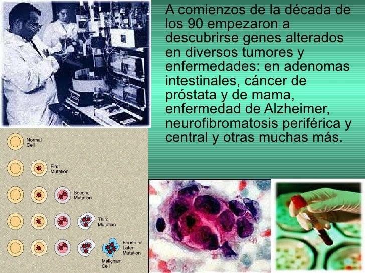 <ul><li>A comienzos de la década de los 90 empezaron a descubrirse genes alterados en diversos tumores y enfermedades: en ...